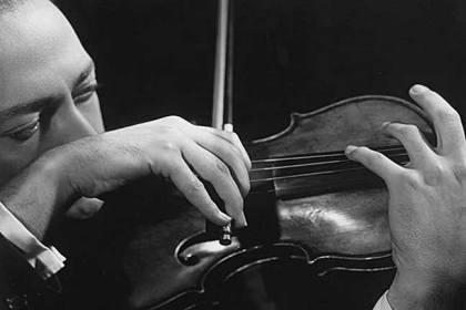 Dolphin Stradivari violin