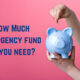 How Much Emergency Fund Do You Need